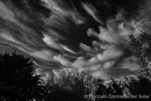 Cirrus clouds at home